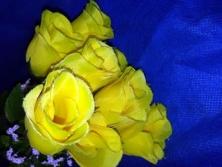 FA015 -Botões de Rosas artificiais lindas cores!