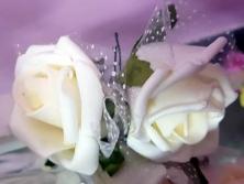 FA009 -Flores artificiais, confeccionada em papel e Eva com tule. Lindas cores!